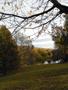 Obec : Břevnov - pohled na rybník Markéta I. od jihozápadu - foto z 2. 11. 2018