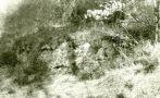 Hrad : Ježov - pohled do lokality - foto z r. 1990