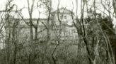 Zámek : Petrovice - pohled parkem - foto ze 17. 11. 1990