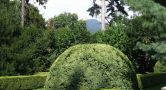 Hrad : Buchlov - pohled na hrad ze zámeckého parku - foto srpen 2006