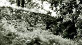 Zámek : Sázava - zbytky tvrze - foto z r. 1994