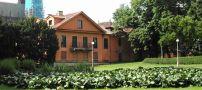Objekt : Zahradní dům - pohled z Královské zahrady - foto z poč. 21. st.