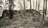 Hrádek : Kokšín - zbytky tvrze - převzato: 'kolektiv, Hrady, zámky a tvrze v Čechách, na Moravě a ve Slezsku IV., Praha 1985, s. 147 (foto J. Nechvátal)'