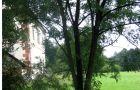 Letohrádek : Bredovský zámeček - pohled na zámeček od západu - foto z 8. 8. 2011