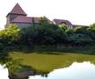 Tvrz : Býšov - pohled na tvrz od východu - foto z let 2012-2018 (převzato: Petr Vlasák)