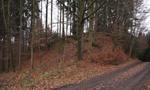 Hrad : Dolní Sytová - pohled do lokality, kde patrně stával hrad - foto z 21. 11. 2014